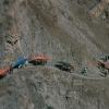 peru_burros_colca canyon
