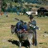 peru_skiing_burro