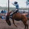 rodeo_farmboy_bareback