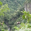 Pailon Del Diablo_Jungle