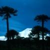 mountain_lonquimay
