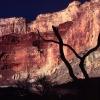 nankoweep_grand-canyon_colorado-rover