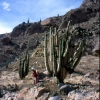 peru_cotahuasi_atacama-desert