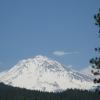 Mount Shasta_Skiing