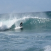 surfing_hawaii