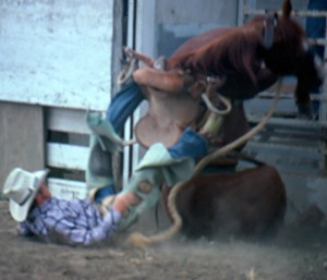 Both rider and horse barely escape serious injury when the horse stumbles coming out of the chute at a small rodeo in Glen Ullin ND